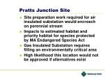 pratts junction site