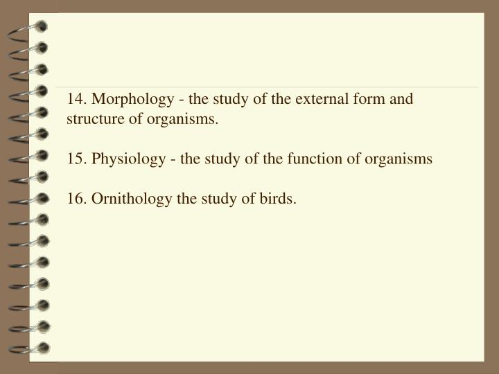 14. Morphology - the study of the external form and structure of organisms.