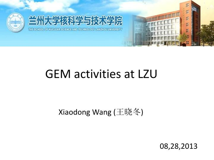 GEM activities at