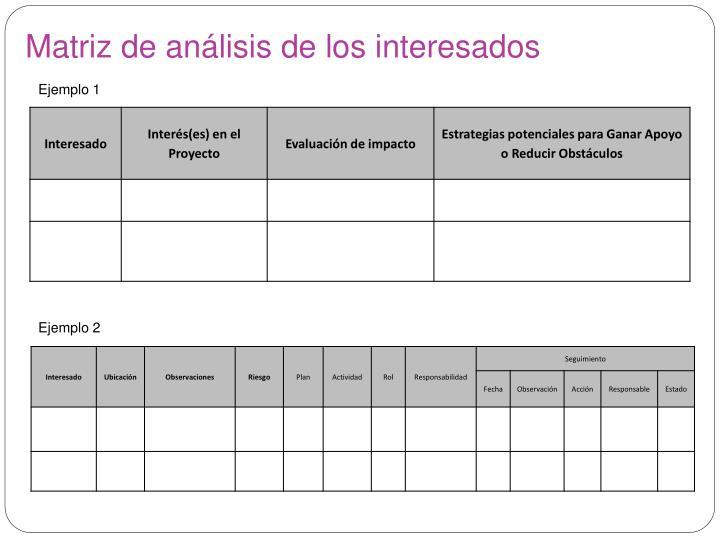 Matriz de análisis de los interesados