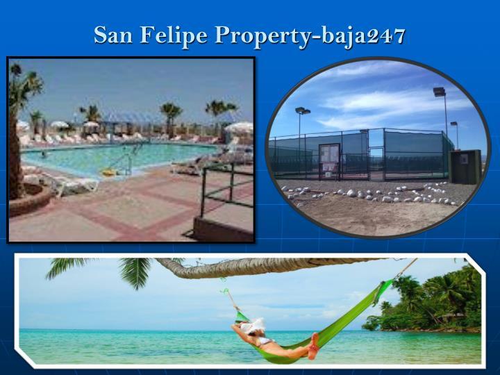 San Felipe Property-baja247