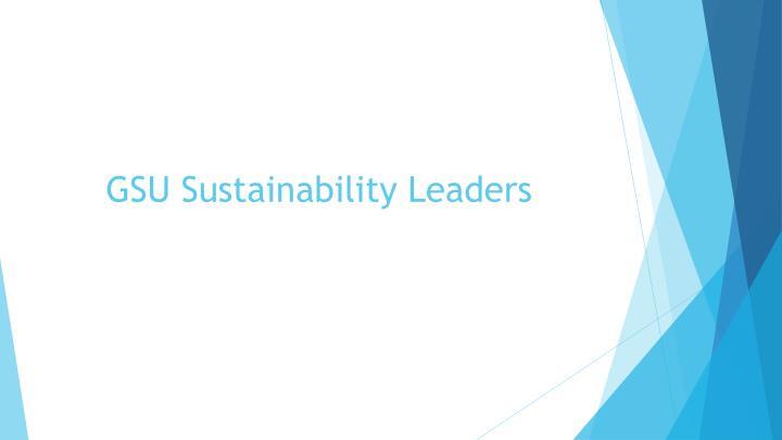 GSU Sustainability Leaders