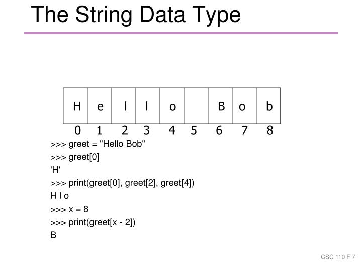 The String Data Type