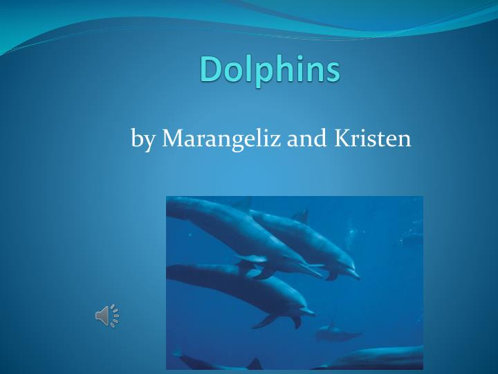 d olphins