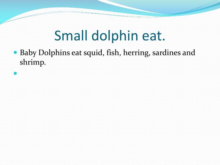 Small dolphin eat.