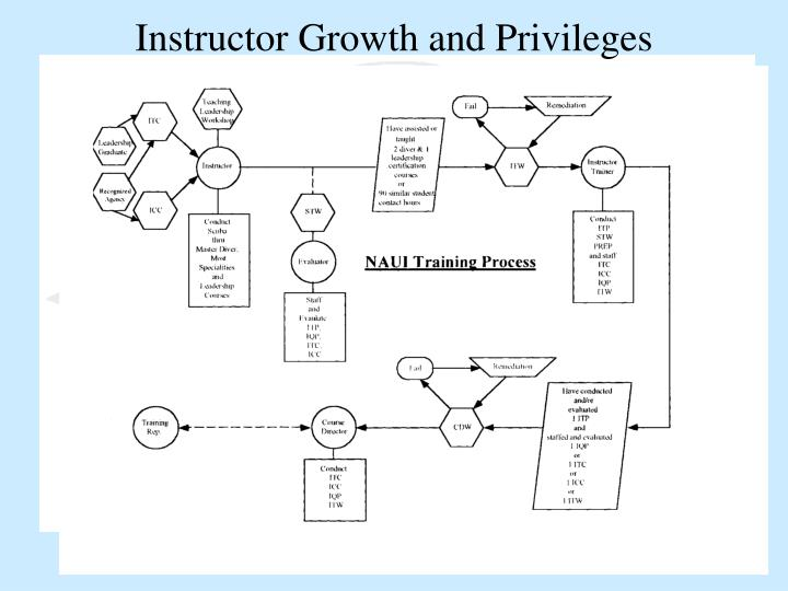Instructor Growth and Privileges