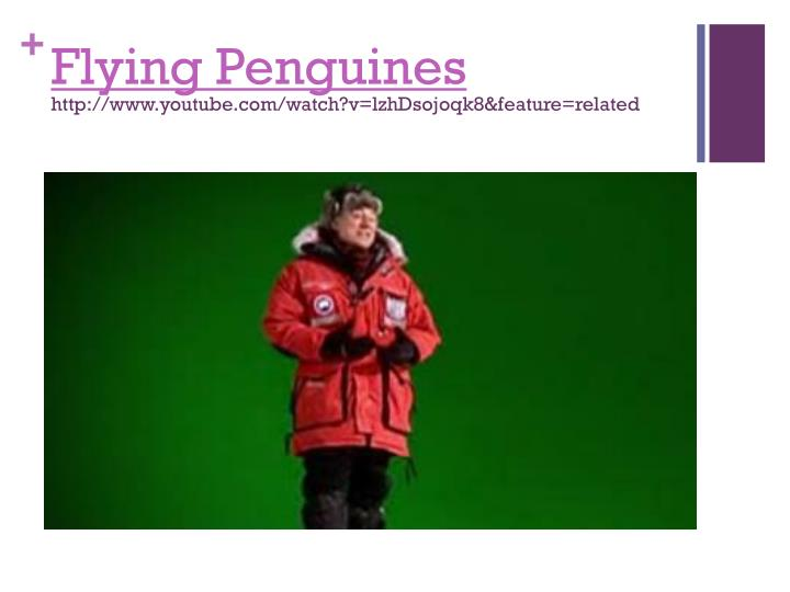 Flying Penguines