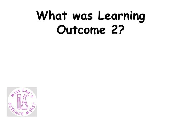 What was Learning Outcome 2?
