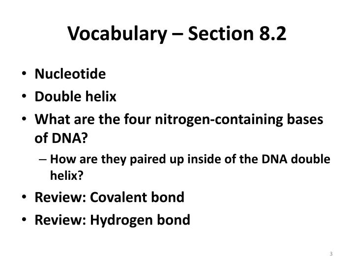 Vocabulary section 8 2
