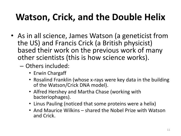 Watson, Crick, and the