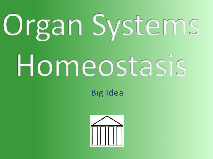 Organ Systems Homeostasis
