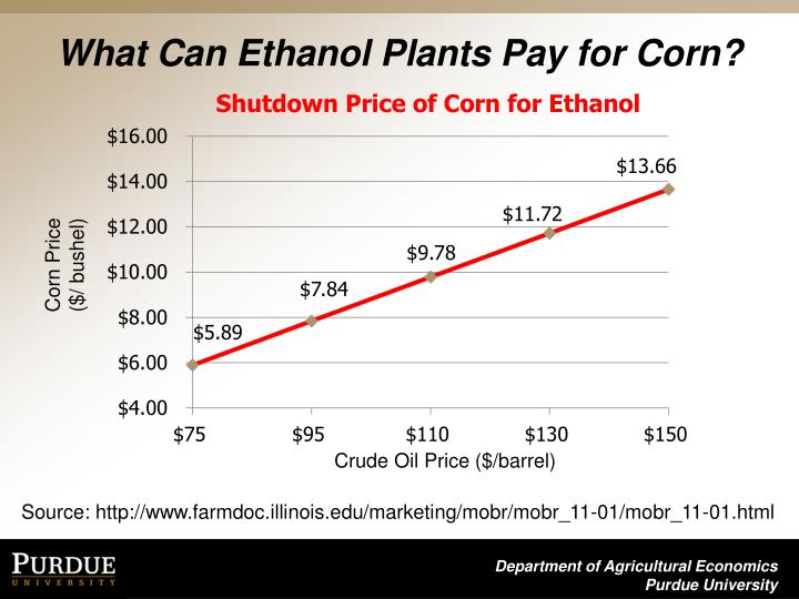 What Can Ethanol Plants Pay for Corn?