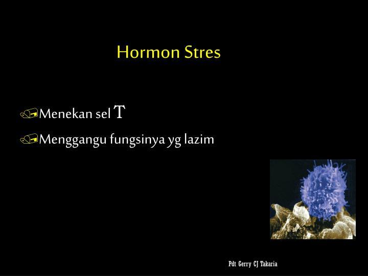 Hormon Stres