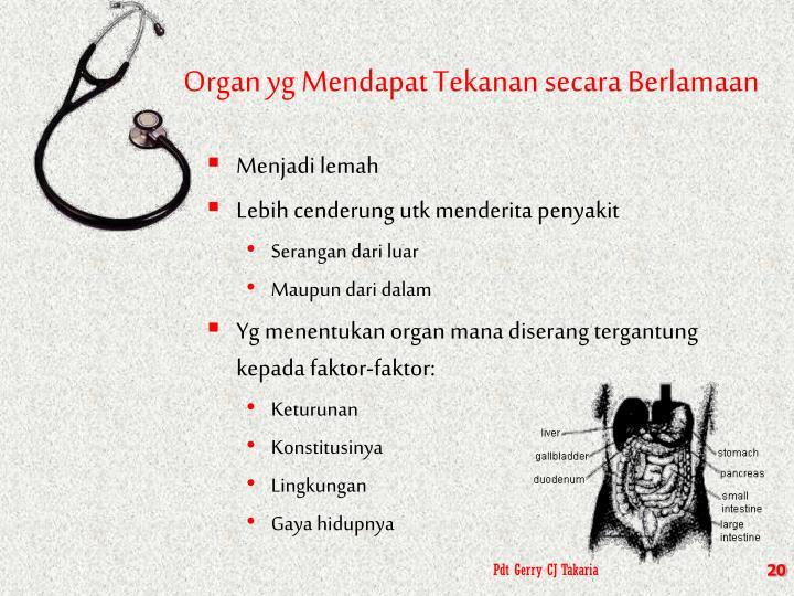 Organ yg Mendapat Tekanan secara Berlamaan