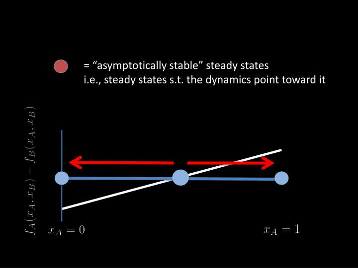 "= ""asymptotically stable"" steady states"