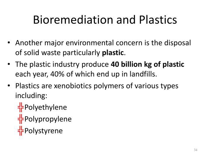 Bioremediation and Plastics
