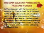 the main cause of problems in pakistan hunger