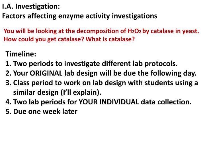 I.A. Investigation:
