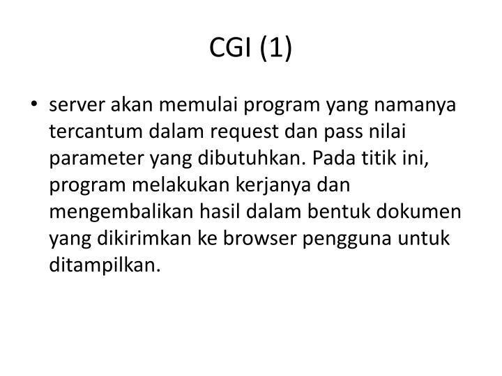 CGI (1)