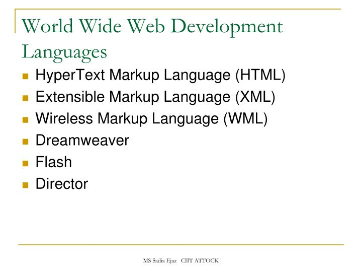 World Wide Web Development Languages