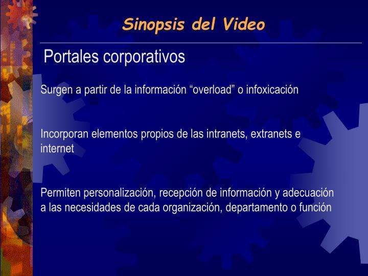 Sinopsis del Video