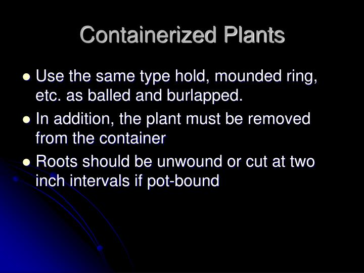 Containerized Plants
