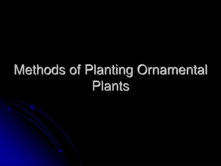 Methods of Planting Ornamental Plants