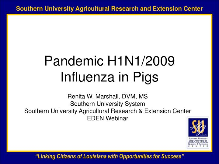 Pandemic h1n1 2009 influenza in pigs