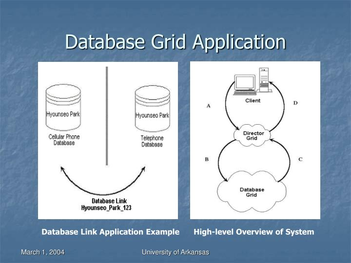 Database Grid Application