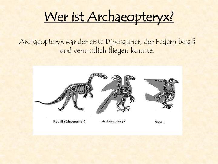 Wer ist Archaeopteryx?