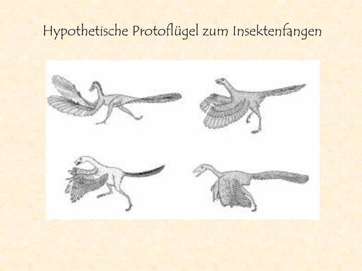 Hypothetische Protoflügel zum Insektenfangen