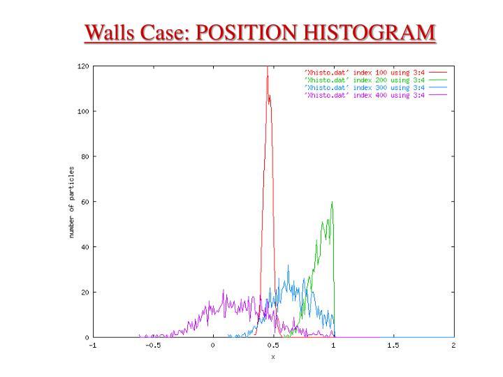 Walls Case: POSITION HISTOGRAM