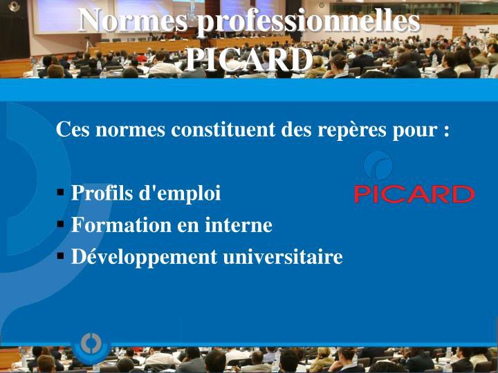 Normes professionnelles PICARD