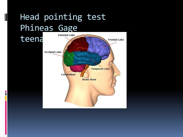 Head pointing test