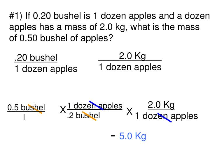 #1) If 0.20 bushel is 1 dozen apples and a dozen
