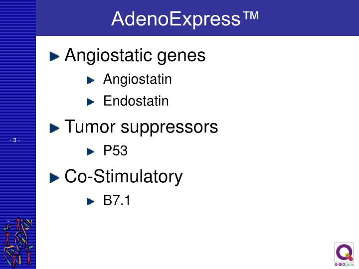 AdenoExpress™