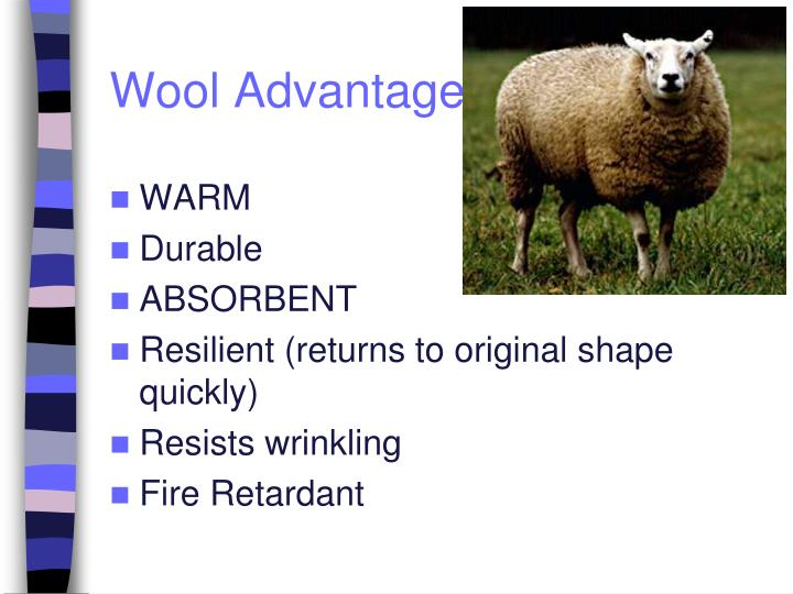 Wool Advantages