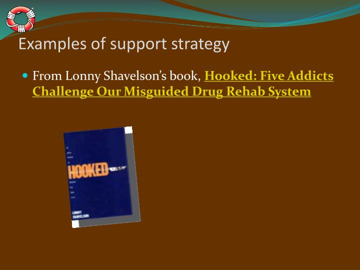 Examples of support strategy