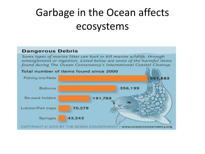 Garbage in the Ocean affects ecosystems