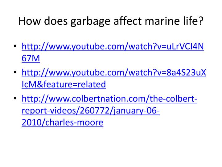 How does garbage affect marine life?