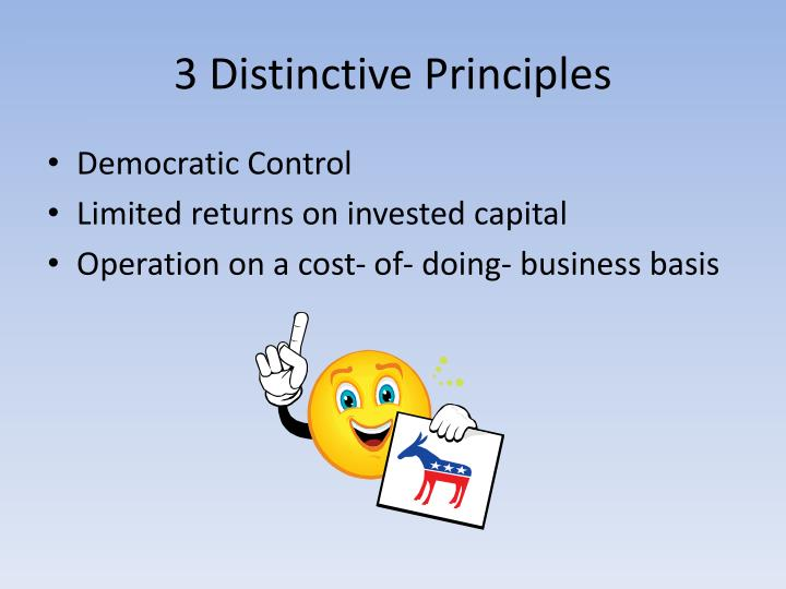 3 Distinctive Principles