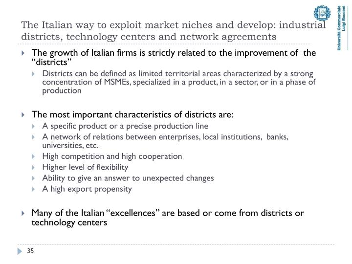 The Italian way to exploit market niches and develop: industrial districts, technology centers and network agreements
