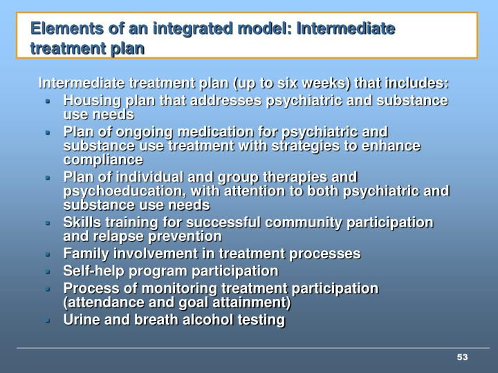Elements of an integrated model: Intermediate treatment plan