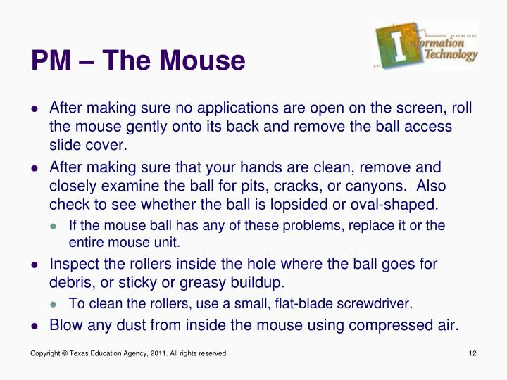 PM – The Mouse