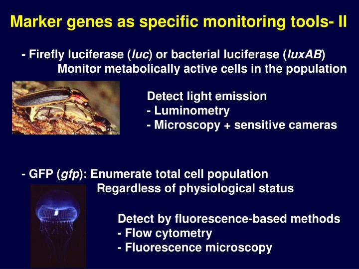 Marker genes as specific monitoring tools- II