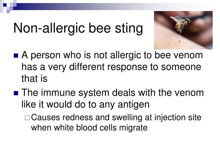 Non allergic bee sting
