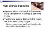 non allergic bee sting