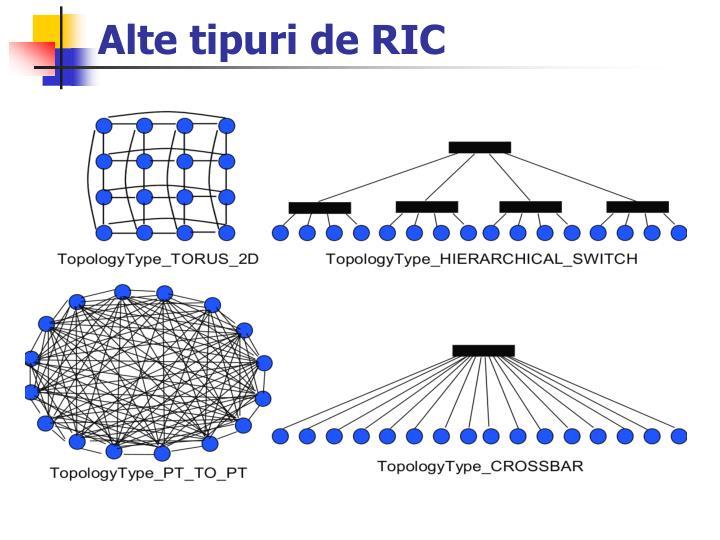 Alte tipuri de RIC