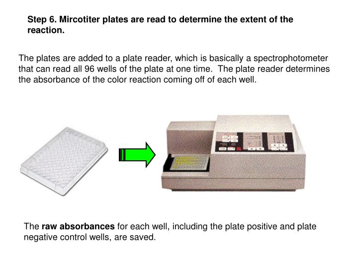 Step 6. Mircotiter plates are read to determine the extent of the reaction.