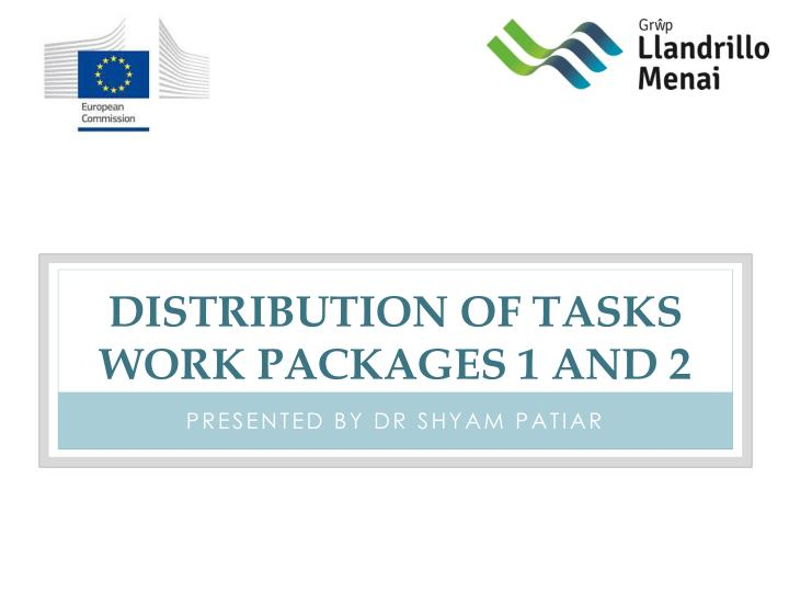 distribution of tasks work packages 1 and 2